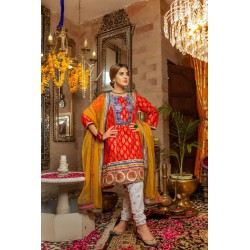 Zara Ahmed Chiffon Collection